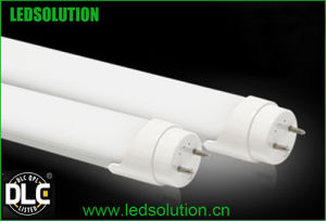 Tube LED T8 15W 4ft Tube Lights Dlc Listed pictures & photos