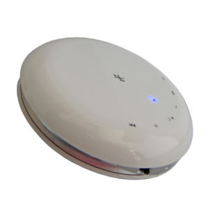 Wireless Bluetooth Speaker with FM/TF/Line in (NV-BS210)