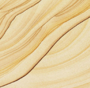 Wooden Vein Sandstones pictures & photos