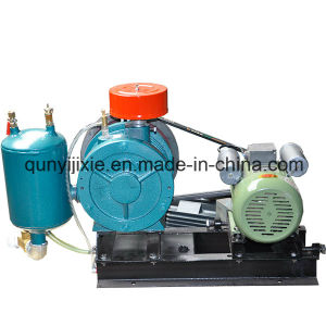 Longer Duty Life Vacuum Coating Rotary Vane Blower pictures & photos