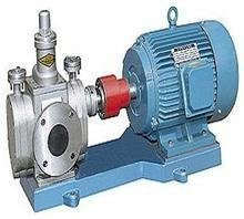 Ycb3.3 Stainless Steel Gear Oil Pump pictures & photos