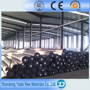 1mm Waterproofing Membrane Pond Liner LDPE EVA PVC HDPE Geomembrane pictures & photos