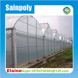 Low Cost Plastic PE Film Greenhouse Hot Sale for Agriculture pictures & photos