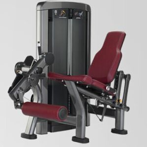 Fitness Equipment Leg Extension Xh905 pictures & photos