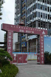 Construction Hoist Lift Crane pictures & photos