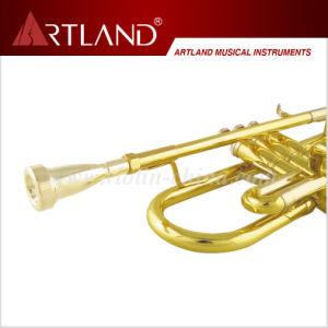Professional Bb Trumpet (ATR6506) pictures & photos