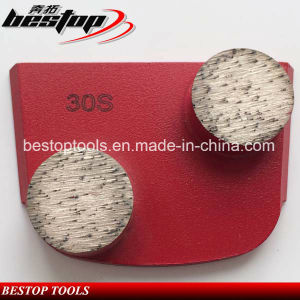 Two Button Segments Lavina Quick Change Diamond Grinding Shoes pictures & photos
