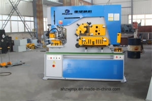 Q35y-12 Hydraulic Combined Punching and Shearing Machine pictures & photos