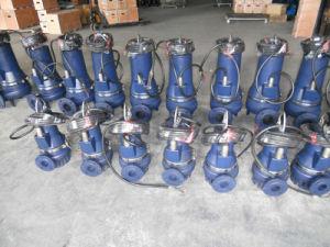 Pit Pump Submersible Sewage Pump pictures & photos