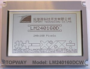 240X160 Cog Graphic LCD Module Best LCD Display Supplier (LM240160D) pictures & photos