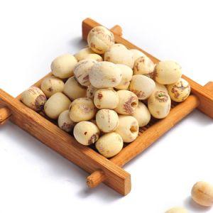 Organic Lotus Seed Chinese Semen Nelumbini pictures & photos