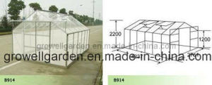 Hobby Greenhouse for Plants and Flowers (B914) pictures & photos