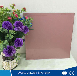 Various Painted Glass with CE&ISO9001 pictures & photos