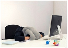 Custom Neck Office Napu Shaped Pillow pictures & photos