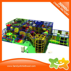 Funky Monkeys Theme Children Commercial Indoor Playground Equipment for Sale pictures & photos
