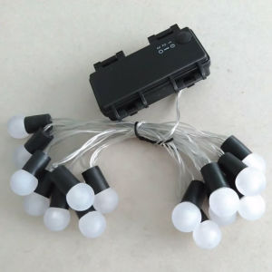 Holiday Decorative Frosted Bulb LED String Lights for Store or Garden pictures & photos