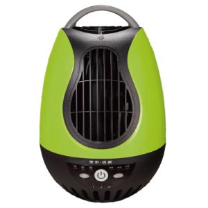 QQ Students Fan FT-13-13bd Green pictures & photos