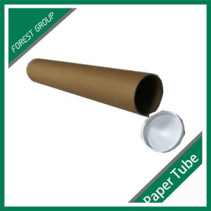 Custom Brown Palin Printing Paper Tube with Cap pictures & photos