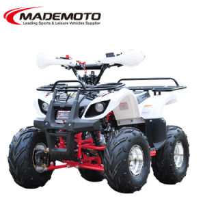 Durable OEM Racing ATV for Sale pictures & photos