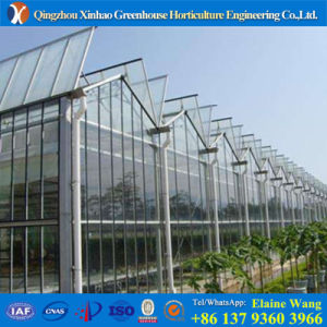 Promotion Glss Venlos Greenhouse for Luttuce Growing pictures & photos