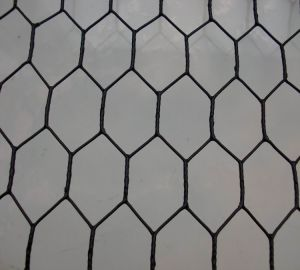 Chicken Coop Hexagonal Wire Mesh / Hexagonal Wire Mesh for Poultry pictures & photos