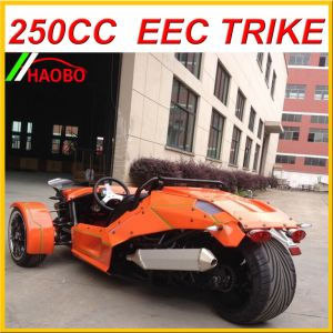 Ztr Trike Roadster 250cc with EEC Approved pictures & photos