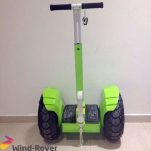 Ninebot 2 Wheel off Road Electric Golf Scooter Mini Classic Golf Cart pictures & photos