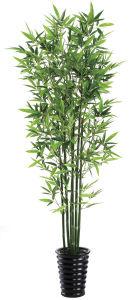 Artificial Bonsai Plant Pot Tree pictures & photos
