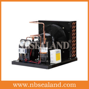 Condensing Unit for Cold Storage pictures & photos