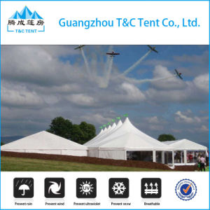 40m Use Semi Permanent Tent Structure for Church pictures & photos