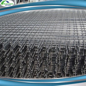Rebar Welded Wire Mesh Reinforcing Welded Nets pictures & photos