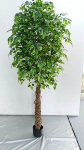 Professional Wholesale Supplier Artificial Banyan Bonsai pictures & photos