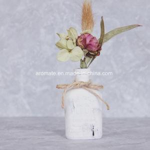 Home Decorative Ceramic Aroma Diffuser (AM-143) pictures & photos