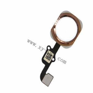 Home Button for iPhone 6 Flex Cable Crystal pictures & photos