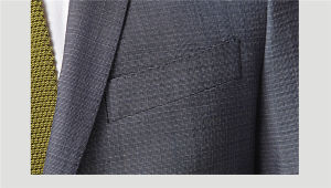 Hand Made Wool Men Fashion Clothing European Style Suits pictures & photos