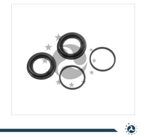 Brake Caliper Repair Kits Accessory Kits Brake Parts Piston, Seal, Guide Pin, Bolt pictures & photos