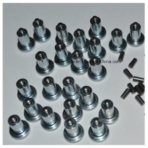 Motor Bike Tyre Studs for Winter Tires pictures & photos