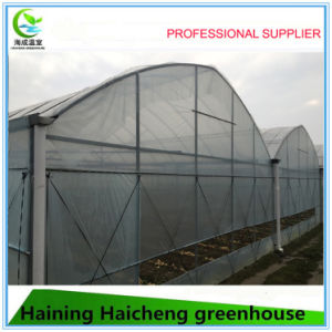 High Quality Agriculture Greenhouse on Hot Sales pictures & photos