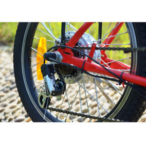 36V 10ah Lithium Battery Women Folding Mini City E-Bike pictures & photos