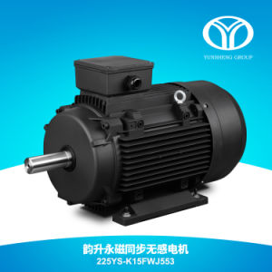 AC Permanent Magnet Synchronous Motor 55kw 3000rpm pictures & photos