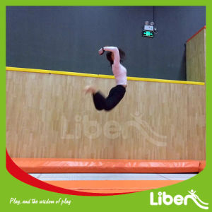 with Professional Design Team Trampoline Indoor pictures & photos