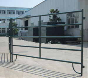 Black Coated 5ftx10FT Horse Corral Panel/Livestock Cattle Panel to America pictures & photos