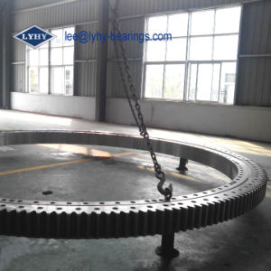 Slewing Bearing for Portal Crane (131.50.3550) pictures & photos