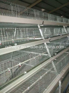 Poultry Equipment Chicken Cage From Qingdao, China pictures & photos