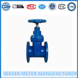 Gate Valve in Iron Material pictures & photos