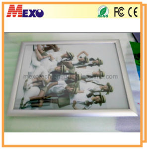 Snap Frame LED Slim Light Box for Advertising (SSW01-A2P-02) pictures & photos