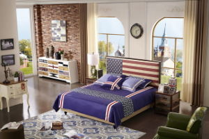 The Modern Style American Bedding Set (A809) pictures & photos