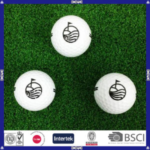 Hotsale Custom Print Two Piece Practice Golf Ball pictures & photos