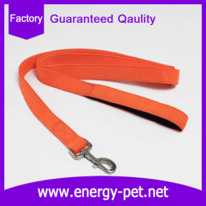 Neoprene Padded Handle Dog Leash Durable and Fast Color