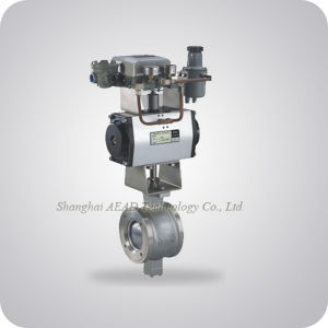 Segment Ball Valve China Supplier pictures & photos